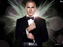 Pitbull vs Inna